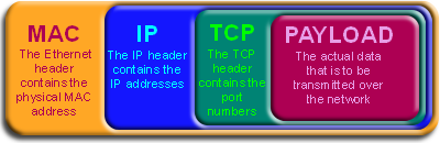 The structure of a typical data packet
